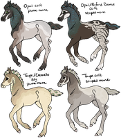 Opal x Bronze and Cremello x Taupe Foals by gyngercookie