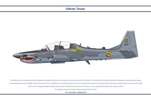 Tucano Colombia 2 by WS-Clave