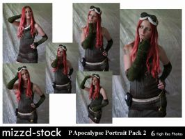 Post Apocalypse Portrait Pack2 by mizzd-stock