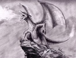 Charizard by Frogger1093