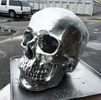 Chrome Skull Replica by JohnsonArms