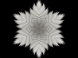 Fractal Snowflake by Thelma1