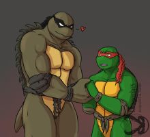 TMNT The new slash by Dragona15