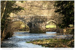 Respryn Bridge by In-the-picture