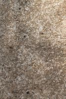 Texture: Cement by apparate