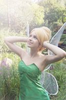 Tinkerbell VIII by JokerLolibel