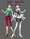 Sailor Moon the Gemini Twins Polly by TheTwinJs