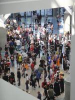 Anime Expo 2010 : From Above by A-U-R
