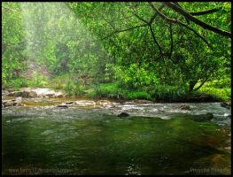 Serene flow 4 by farcry77