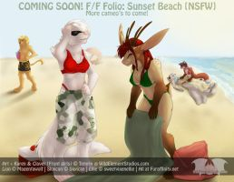 Folio - Sunset Beach by Temrin