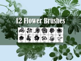 12 Flowers Brushes by xara24