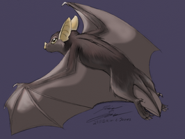 Flying Bat by Slasher12