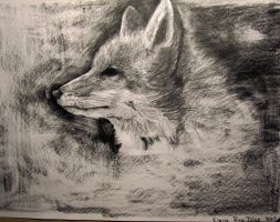 Red Fox drawing by ElenaRD