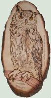 Eagle Owl - Pyrography (Woodburning) by snazzie-designz