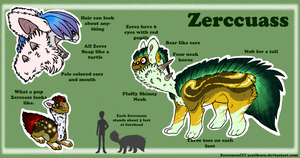 Zerccuass Ref sheet by Jazzikorn