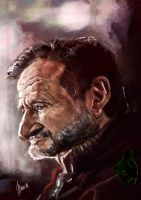 Robin Williams caricature by jupa1128