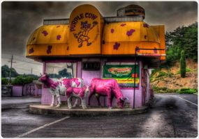 The Purple Cow by barefootphotos