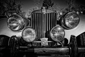 MG by CharmingPhotography