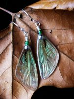 Iridescent cicada wing earrings - green and silver by ceruleanvii