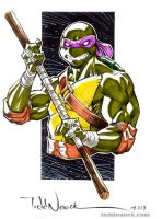 Donatello by ToddNauck