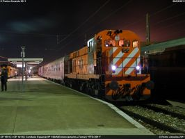 PTG 2011-Night Arrival 060211 by Comboio-Bolt