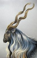 Markhor Goat by HouseofChabrier