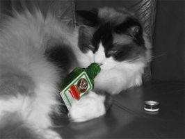 Jagermeister-does a body good by NikonCha