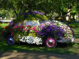 Flower Car by randomanonym