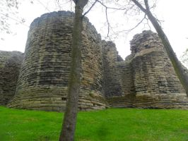 Pontefract castle 2 by cannibalmoth