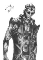 Thane Assassin (v.2) by NeLLyN