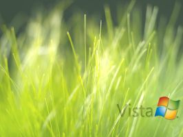 Vista Grass by orthuga