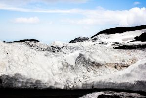 Icy Wastes by Maltese-Naturalist