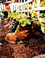 Sprouting Boots by TemariAtaje