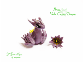 Pensee, Violet crocus dragon by rosepeonie