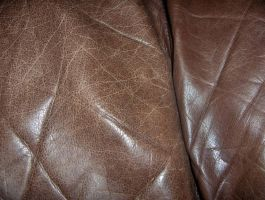 Brown Leather 04..... by Shadukha-Stock