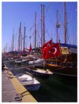 Flags and Boats by Lorenne