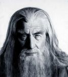 Gandalf the Grey by lithriel