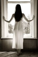 Morning-glory At My Window by philneff