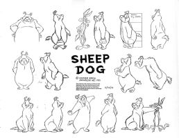 Sam Sheepdog Model Sheet by guibor