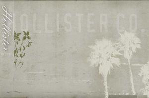 For Hollister Luvrs by GingerZombay