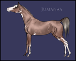 Auction: Jumanaa by Ehetere
