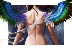 Wings by Blaetterwind