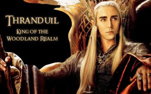 Thranduil King of the Woodland Realm by Menkhar