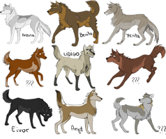 Some wolf concepts. by AriaDog