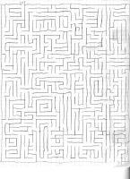 Maze by dproberts