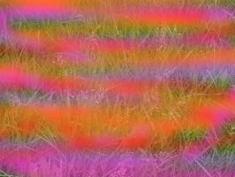 Psychedelic Grass by ThunderFreak