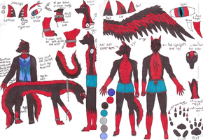 Red Fang Furry NIghtsky ref by Animedevildeman