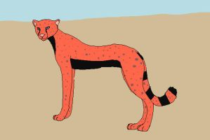 my new cheetah oc eava by lioness728
