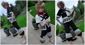 Ventus WIP May by Theelfinartist