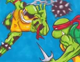 Battle Toads vs Ninja Turtles by DrakeStirLawl